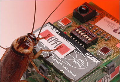 DJ Cockroach perfecting her mix
